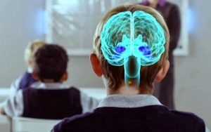 neuroeducacion y aprendizaje